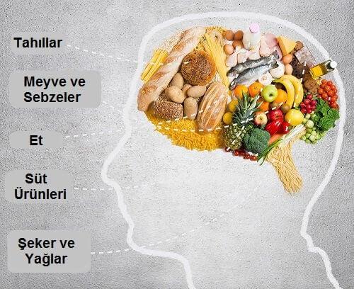 beslenmenin beyne etkisi