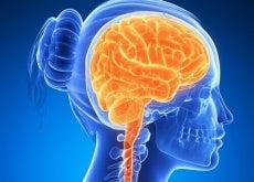 beyin-gücü