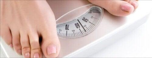 ideal kilo 2