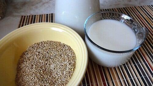 Kilo Vermek için Kuşyemi Sütü Nasıl Hazırlanır ve Tüketilir?