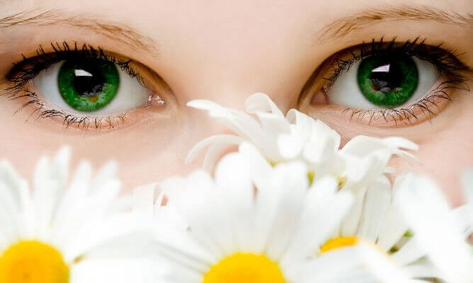 parlak-gözler