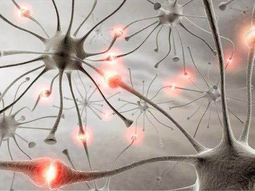 saglıklı beyin