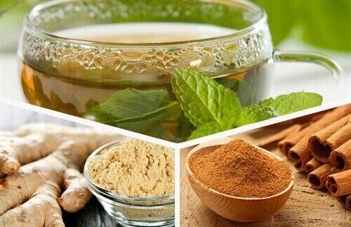 Zencefil, Yeşil Çay Yaprağı ve Tarçın: Bu Şifalı Çay İle Yenilenin