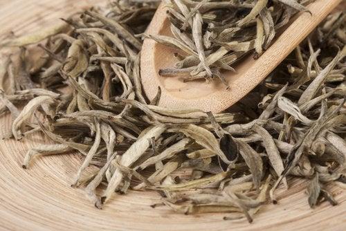 Magnezyum Yönünden Zengin En İyi 2 Doğal Çay