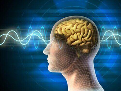 Zinde Bir Beyin İçin 10 Emir