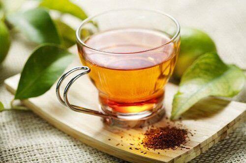 rooibos-çayı