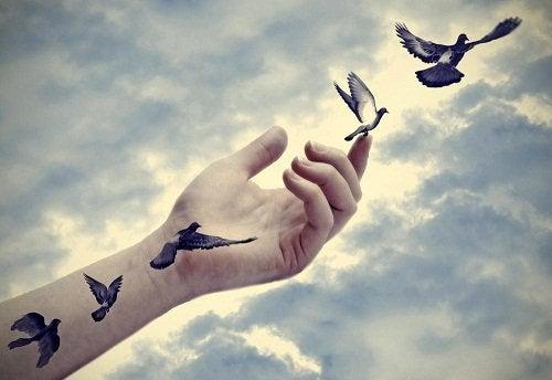 özgürlük güvensizlik