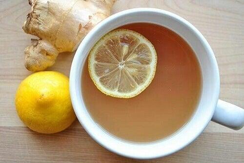 Limon ve Zencefil ile Kilo Vermenin 5 Yolu