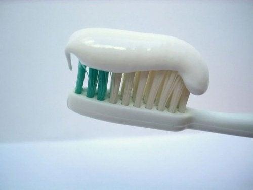 diş macunlu diş fırçası