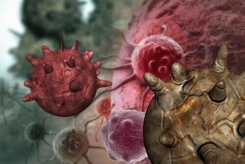 Kanser Tetikleyici 8 Farklı Gıda: Keşfedin