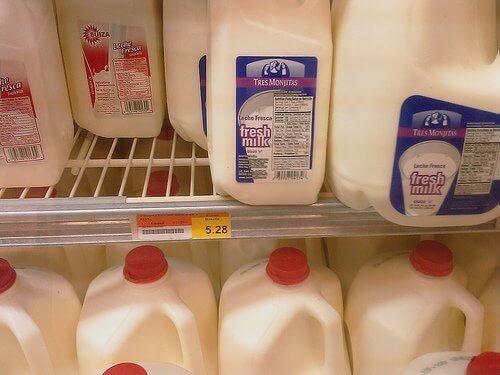 teze süt
