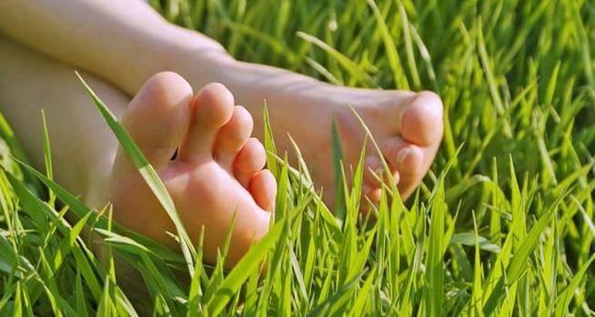 çimlere uzanmak
