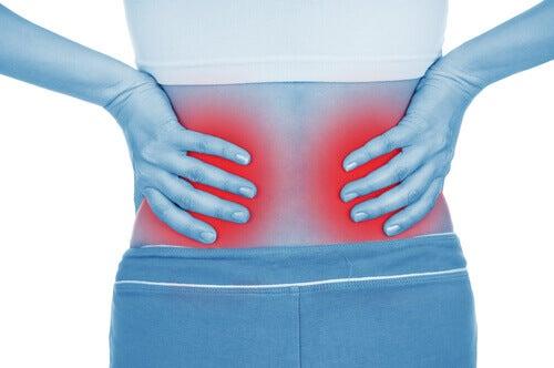 böbrek ağrısı 2