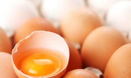 yumurta sarısı