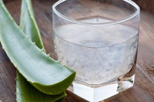 aloe-suyu