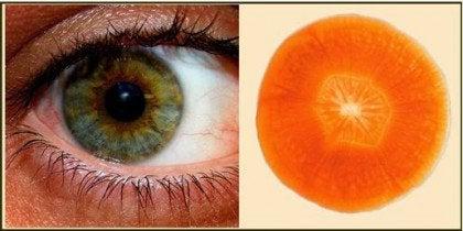 havuç göz