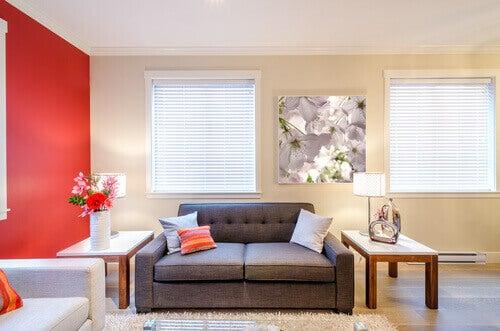 alerji yapmayan bir ev için temiz oturma odası