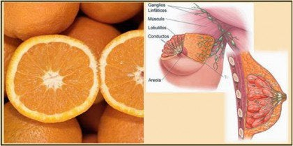 portakal göğüs