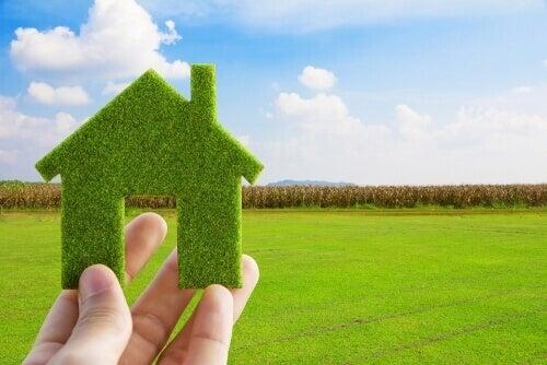 yeşil ev
