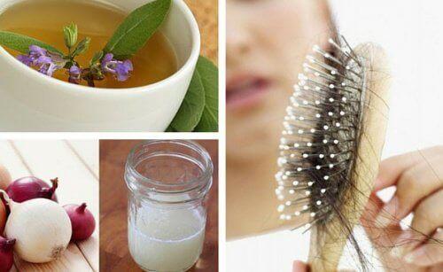 Saç Dökülmesi Sorununu Çözmek İçin Kullanabileceğiniz 5 Doğal Tarif