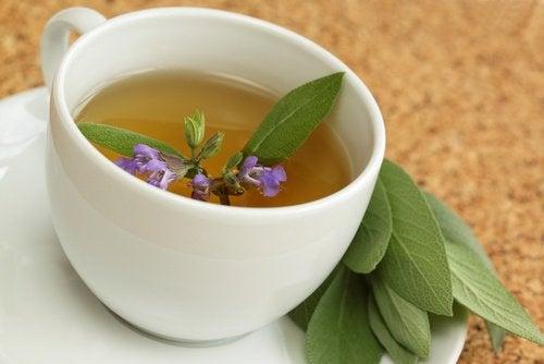 bir fincan ada çayı