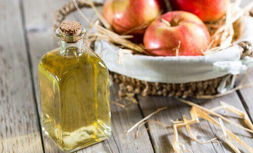elmalar ve elma sirkesi
