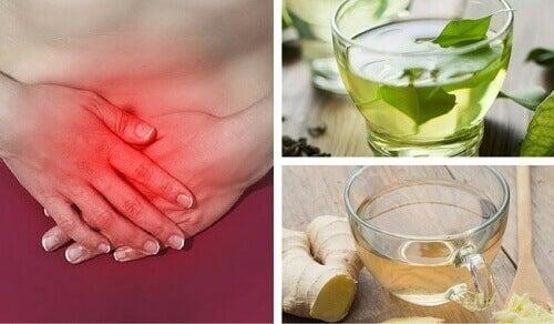 Bağırsak Gazına Karşı 8 Bitki Çayı