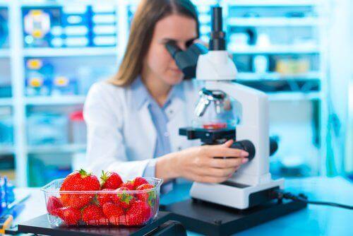 3-cilekler-mikroskop