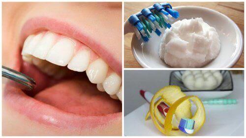 Dişleri Plaktan Arındırmak İçin Ev Yapımı 5 Tedavi