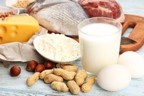 protein alımı