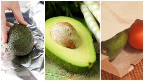 Dakikalar İçinde Avokado Olgunlaştırmak İçin 5 Hile