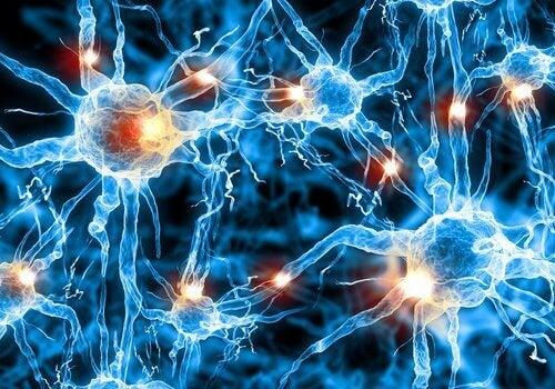 Bilim İnsanları Alzheimer'a Yeni Bir Tedavi Buldu