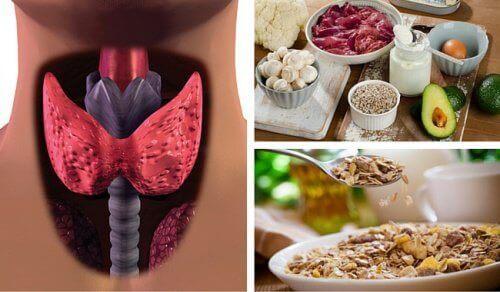Metabolizma Hızınızı Arttıran Yiyecekler Yardımıyla Hipotiroidizm ile Savaşın