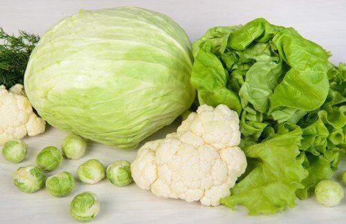 yesil-yaprakli-sebzeler