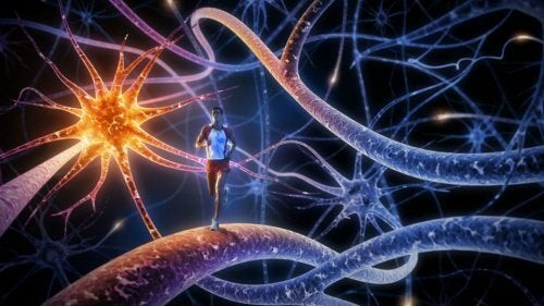 Beyni Güçlendirmek için En İyi 8 Egzersiz