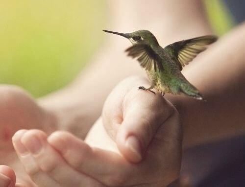 Mesafe Almak Kişisel Bütünlüğün Bir Formudur