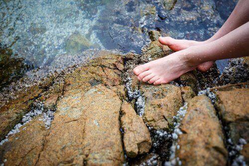 soğuk su kayalıklar