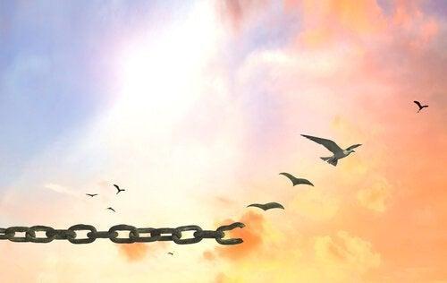 gökyüzünde zincirlerini kırarak uçan kuşlar
