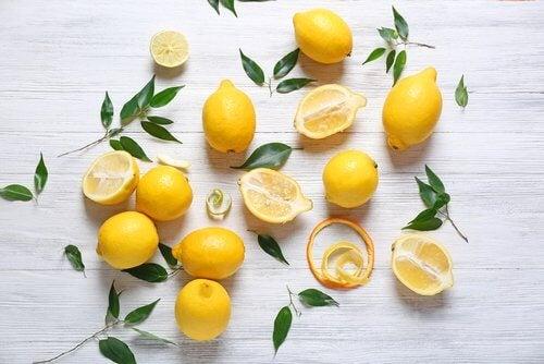 limon ağacı yaprakları ve limonlar