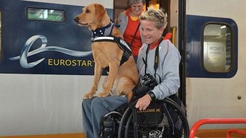 Marieke Vervoort ve köpeği