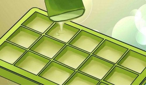 Etkileyici Faydaları İçin Aloe Verayı Dondurmak
