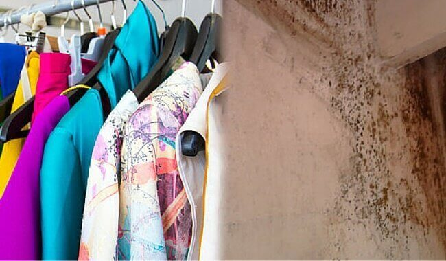 kıyafetler ve küflü duvar