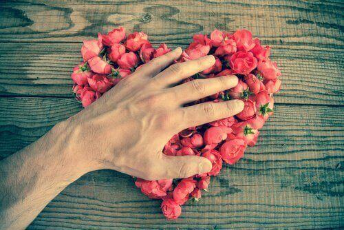kalp şeklinde çiçekler