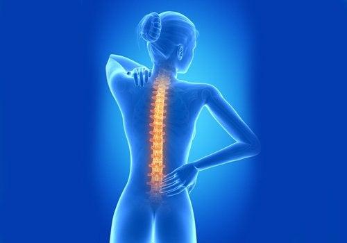 sağlıklı bir omurgaya sahip olmak için ipuçları