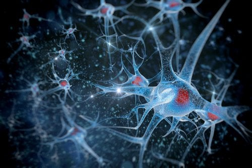 elişi aktiviteleri ve beyin