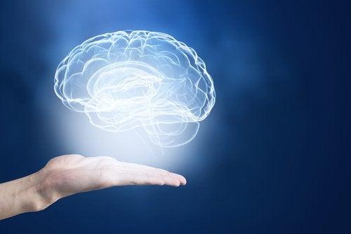Hafıza Güçlendirmek için Mükemmel İpuçları