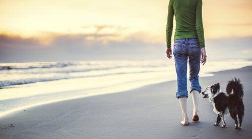 sahilde köpek ile yürüyüş yapan kadın