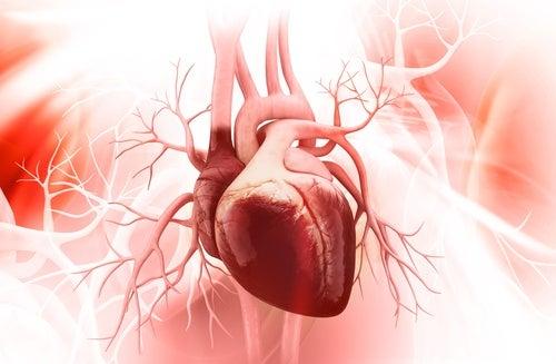 Kırık Kalp Sendromu ve Üstesinden Gelmenin 5 Yolu