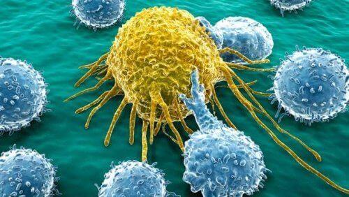 Yumurtalık ve Pankreas Kanseri için Yeni Bir Molekül