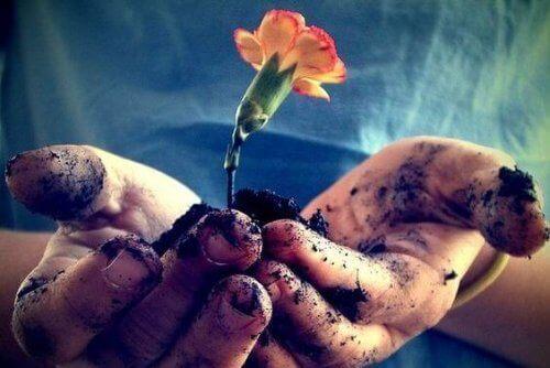 Sevgi, Zenginleşmek için Her Gün Beslenmelidir